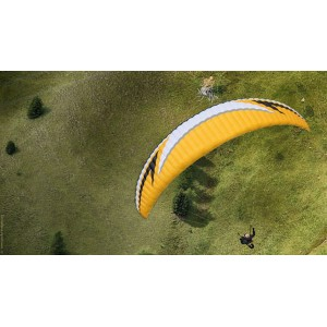 Swing Apus RS